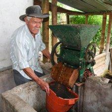 91_kolumbia_salento_plantacja_kawy